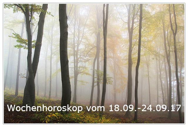 autumn-194834_640-1