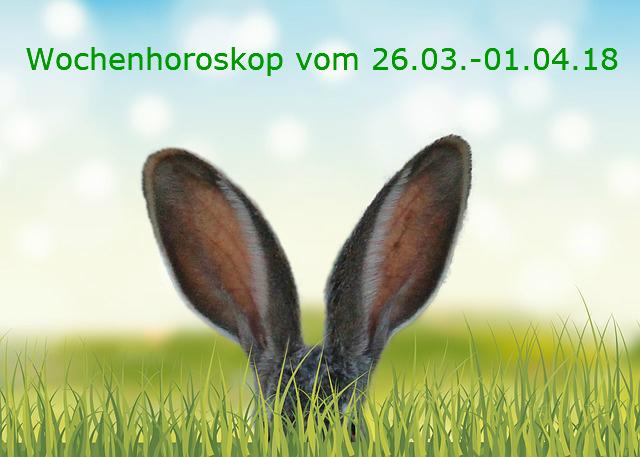 grass-3249879_640